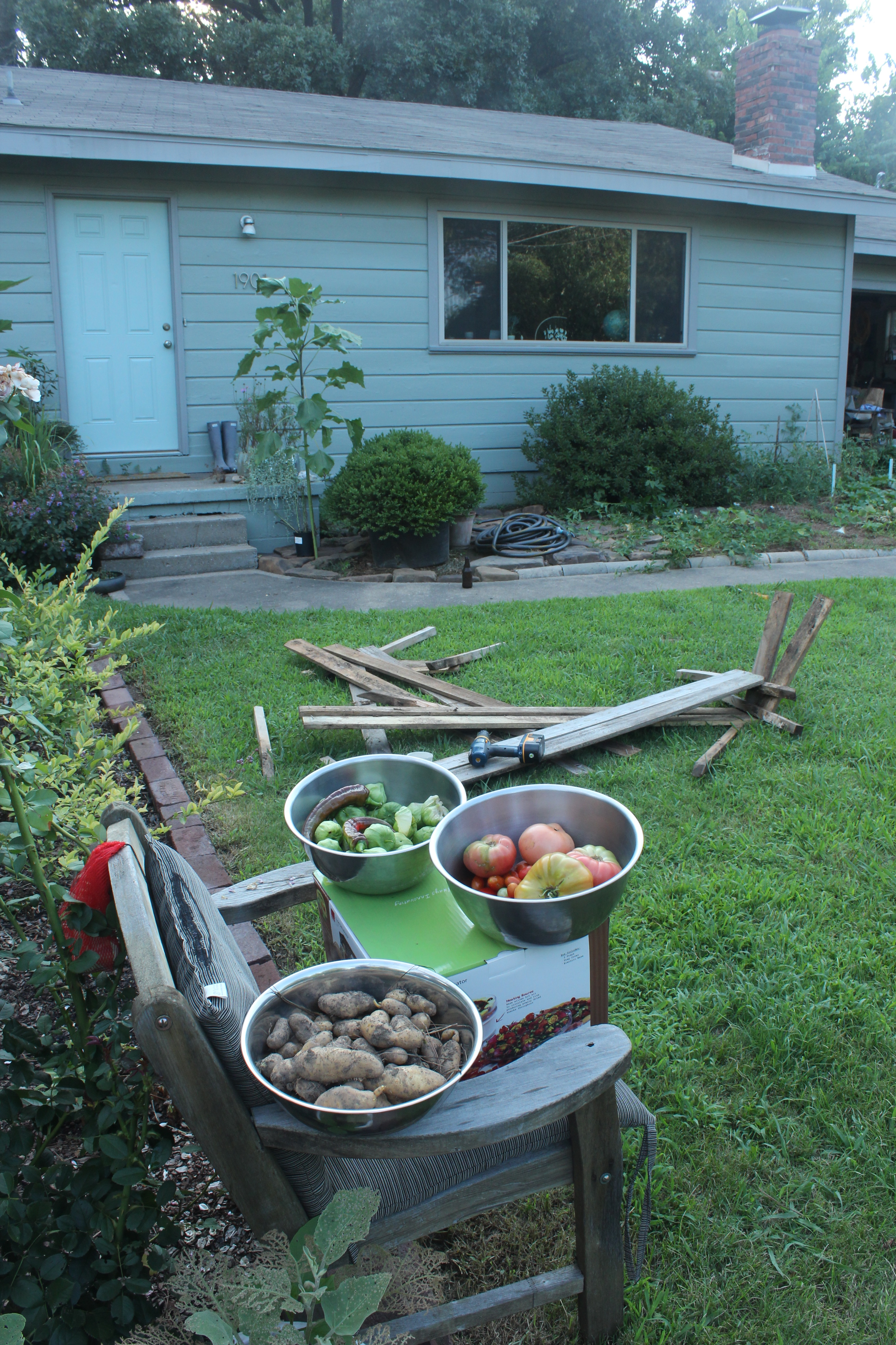 Vegetable Gardening | The Cultivator